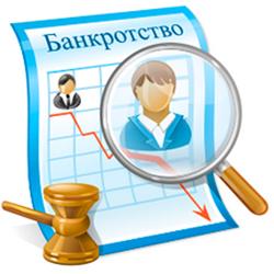 bankrotstvo-ip-poshagovaya-instrukciya